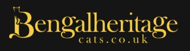 Bengalheritage Cats Ltd is a Silver Bengal Cat Breeder Specialist