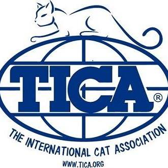 Bengalheritage is the TICA Registred Cattery Prefix of Bengalheritage Cats